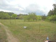 земельный участок в Борисовском районе